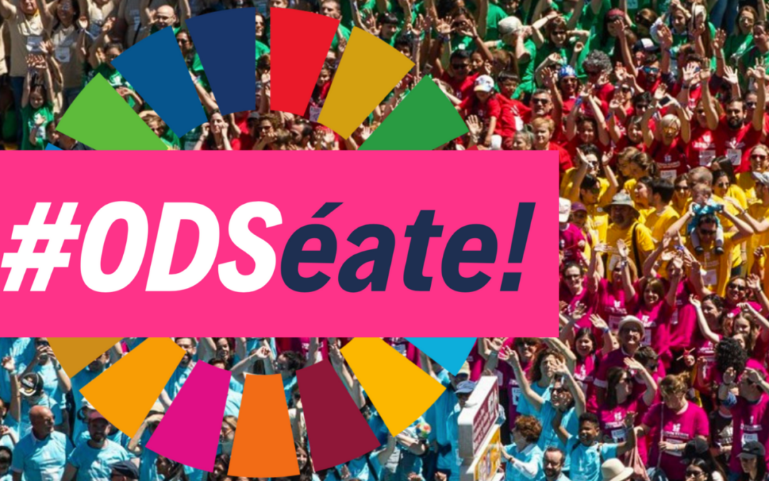 THE EUROPEAN AND IBERO-AMERICAN ACADEMY OF YUSTE FOUNDATION JOINS THE CAMPAIGN INTENDED TO DISSEMINATE THE SDGs